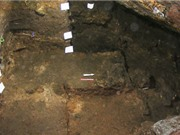 DNA cô lập từ môi trường tiết lộ nhiều hơn về cuộc sống cổ đại