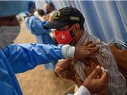Tính an toàn và hiệu quả của Vaccine Sputnik V: Những bằng chứng mới nhất