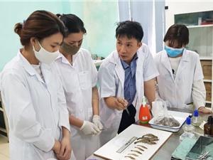 Phòng trừ dịch  bệnh trên thủy sản: Bắt đầu từ thói quen dùng kháng sinh