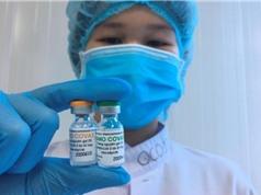 Nanocovax công khai dữ liệu tiền lâm sàng và lâm sàng