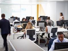 Nên vận động 3 phút sau mỗi 30 phút ngồi làm việc để tránh rủi ro sức khỏe