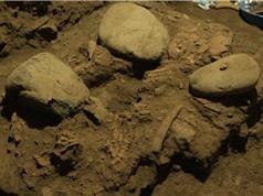 Phát hiện DNA nguyên vẹn của người phụ nữ sống cách đây 7.200 năm