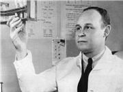 Charles Richard Drew: Người khởi xướng ngân hàng máu