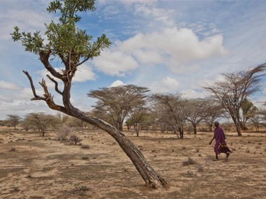 Hạn hán khiến 2,1 triệu người Kenya có nguy cơ chết đói
