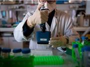 Hợp tác thử nghiệm XAV-19: Thêm hi vọng điều trị bệnh nhân COVID?