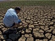 """""""Thiên tai kép"""" hạn hán - nắng nóng ảnh hưởng nghiêm trọng đến năng suất cây trồng"""