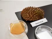 Biến vỏ sầu riêng thành băng kháng khuẩn dạng gel