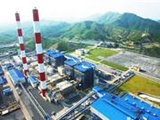 IEEFA: Mục tiêu tăng công suất điện than trong quy hoạch 8 khó khả thi