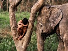 Những bất ổn trong ứng xử của con người với loài vật và nguyên do (Tiếp theo và hết)