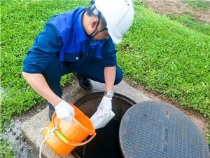 Giám sát dịch bệnh qua nước thải