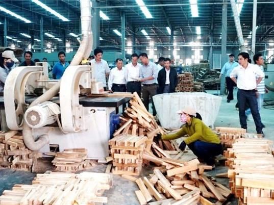 Sản xuất và tiêu dùng bền vững: Khi tiêu chuẩn vào cuộc