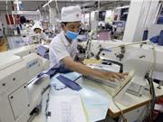 Kế hoạch giám sát phát thải CO2: Thị trường mua bán carbon của Việt Nam?